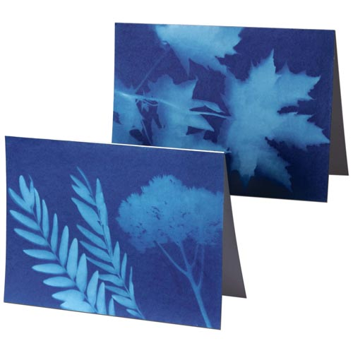 NaturePrint Paper Note Cards - Project #13